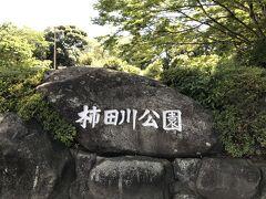 最後に柿田川公園を散策。 夏場は暑いのう。