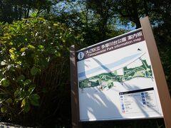 多摩川に戻り 天気いいから、多摩川台公園に 桜と紫陽花が見事な公園で