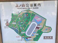 山頂は公園になっています、