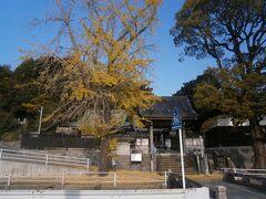 わずか500メートルほどで第13番札所の安楽寺に到着しました。山門前に大きなイチョウがあり、橋を渡って境内に入ります。