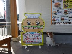 食べてばっかりですが… 佐世保バーガーあいかわさんへ到着です。  佐世保バーガーのお店は数あれど、こちらは、肉屋さんが経営しているハンバーガーショップということで、こちらに決めました。