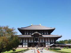 タクシーには待ってもらって、東大寺大仏殿へ。当たり前だけど大きいです。