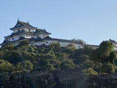 我が名古屋金鯱城と同じくコンクリート製だからそのうち名古屋城みたいに建て替え騒動勃発するんですかね?