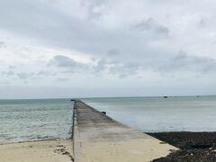 台風大掃除を終え、自転車で島をぐるっと回ってみました。 台風一過の伊古桟橋。 手前にある茶色いものは、打ち上げられた海藻です。 海の中に生えていたものが台風の波風でちぎれ、こうして打ちあがります。 しばらくたつと、虫が湧いて臭くなる・・