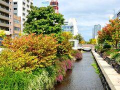 お腹も満たされたのでお散歩開始。 創成川が流れる風景は何だかソウルの清渓川を思い出したりなんかして(笑)