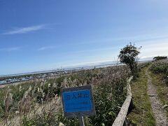 次の目的地は野付半島です。高校生の北海道の地誌の授業で地図帳を広げたときに真っ先に見る場所といえば野付半島というほど、私は野付半島に憧れを抱いていました。沿岸流で土砂が堆積して形成された砂嘴(さし)がとても魅力的に感じたのです。地図帳は面白いですね。  天気が良いことも相まって、嬉しさ爆発です。 以下のリンクに野付半島散策の詳細があるので是非ご覧ください。 https://4travel.jp/travelogue/11711919