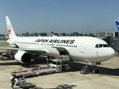 搭乗した飛行機。私のキャリー、無事着いたかな?隣はANA。 いつもは福岡から小倉へ向かいますが、今回はイレギュラー。福岡2泊、小倉3泊し、また、福岡空港から戻ります。  まっすぐ天神のホテルに向かい、荷物を置いて、ランチしに行きます。