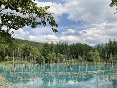 本日最後の絶景スポット、青い池です。