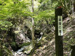 連理の滝  木の枝葉が生い茂っていて、どれがそうなのかよくわからず… 帰ってから調べてみると、 「滝見道からは直接見ることができません。 この滝を見るには滝見道を外れ、斜面を木につかまりながら少し下りないといけません。 足を滑らせると大変危険なので、決して無理はしないように。」 とのこと。