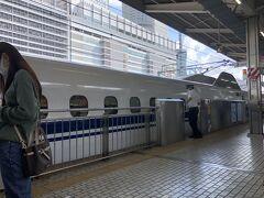 新幹線行きは自由席 金券ショップで安く購入 駅で4180円特急券のみ購入 でもずいぶん指定席と違う、、