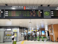 宇都宮までは普通に着いたが 前日自信がありダイヤが大幅に乱れていて湘南ラインは午前中は運休だった 駅員さんに聞くと 上野行きの電車が あると言う その後放送で何回も流れていた