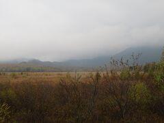 続いて戦場ヶ原に 草紅葉は見頃とのこと。