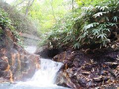 今回の旅行のメインにしていた大湯沼川天然足湯。 早々に目的達成できて満足満足。 マリンシューズを持って来たけど、カムイワッカ湯の滝のようには誰も登って行きません。 ただ足を浸けているだけ。 んー、歩いて行きたい。