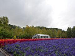 最後に立ち寄ったのは観光農園のファーム富田