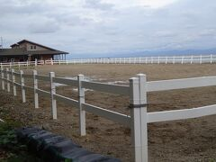 あわしま牧場(昭和初期まで野生馬が生息し、江戸時代には50~60頭居ました。 義経が奥州に逃げる時に解き放した馬が泳ぎ渡ったという伝説があります。)