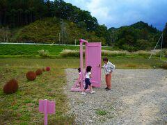 どこでもドアを千鳥格子御堂から発見しました。  ピンクノドアともいうらしい。