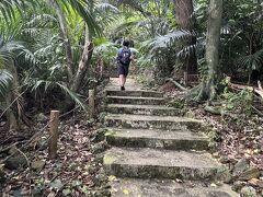 ジャングル。天然記念物いっぱいだなぁ。 一旦ホテルに戻ってシュノーケリングの準備をします。