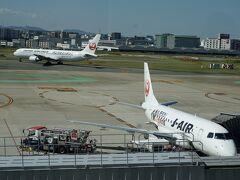 福岡空港に着いたー!  久しぶり(´Д` ) 昨年11月以来。
