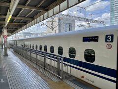11:19 静岡駅に降り立ちました。  改札を出ると人がとても多くJRの広報の人、警察官、出待ちの人 など物物しい雰囲気 どうやら次の東京発のひかりで到着するらしい。 芸能人?政治家?