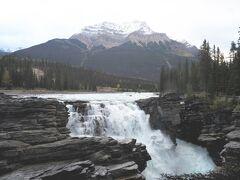 ジャスパーから一番近いのが アサバスカ滝です。 ぐるっと回る遊歩道がついてますが、今回はササっとココだけみて次~!