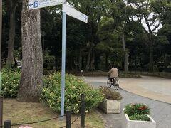 横浜公園を歩いて