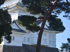 本丸は今では小田原城址公園となり、憩いの場でもありました。