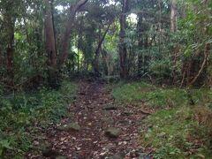 さて、蓮着寺をお参りした後は、ここ城ヶ崎自然研究路を歩きます。  この東に城ヶ崎ピクニカルコースというよく整備されたウオーキングコースがありますが、この城ヶ崎自然研究路はとてもハードだというウワサがあります(苦笑)