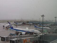 飛行機が出発するまで第2ターミナルの展望デッキで飛行機を見学中