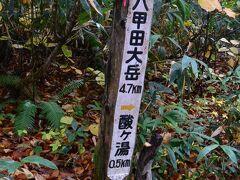 68 八甲田大岳の分岐まで来ましたので、ここで引き返すことにしましょう。 往復1時間でした。