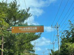 国立公園エリアに入ります。ここまでで那覇市内から高速利用で所要時間2時間弱です。