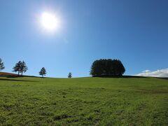 そして、マイルドセブンの丘。カラマツの林が青空に映えます。