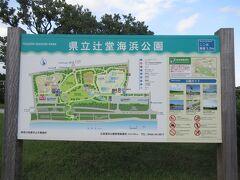 検索したら辻堂海浜公園がヤシの木があってハワイっぽい感じかなと思って行ってみました。