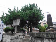 北山通りを走るバスに乗って、一乗寺下り松町へ。  これが一乗寺下り松。宮本武蔵が吉岡一門数十人と決闘を行った伝説のある場所です。