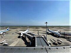 久しぶりの羽田空港第2ビル いいお天気です。