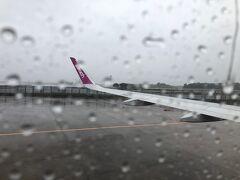 10/1 房総半島沖に台風が位置しており飛行機が飛ぶかどうかも微妙な中、成田に向かいます。最寄駅からの成田行きバスはこのご時世運行を取りやめておりどうやって成田まで行こうか迷いましたが、エアポートリムジン新宿発でスーパーWEB割という半額割引が利用できたので新宿から成田空港までバスに乗り、実に久々の成田空港へ。着いてさっそく運行状況を確認するとどうやら午前中の飛行機は飛びそう、ということでいそいそと手続きを済ませ機上の人に。窓の外はご覧の通り台風の影響で酷い天気。