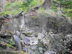 雪で知床峠が通行止めのため、代替えで岩尾別温泉の3段の湯に案内してくれました。 世界自然遺産に泊まれる唯一の温泉宿 地の涯の目の前。