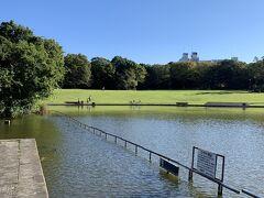 閉鎖と勝手に思っていた多摩中央公園の池