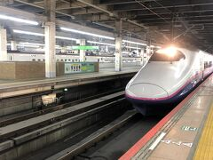 大宮駅からは東北新幹線やまびこ号に乗車。
