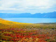 天気良くないけど、ちゃ~んと支笏湖見えました。 ヮヾ(++)ノ゙*。ォ! 紅葉も美しい。