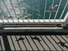 「豊浜大橋」の欄干には、広島県の県鳥であるアビのレリーフが細工されている。 アビは越冬のため日本に飛来する渡り鳥で、この地域ではかつて「アビ漁」と呼ばれる漁が行われていた。 アビの好物のイカナゴが激減し、アビの飛来も減少したので、1980年代を最後にアビ漁も途絶えたという。