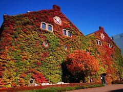 お目当ての蔦が紅葉してインスタ映えするでお馴染みのレンガ館。