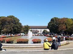上野公園 みなさん、ひなたぼっこされてますね