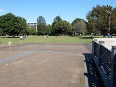 武蔵国分寺公園・泉地区の円形広場.  広いです.周回路を一周しました.