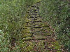 苦難の始まりです。 下りの石畳は超難敵。コケルこと請け合い。 石を避けて下ります。 歩行速度は通常の2割弱。超疲れます。膝もガクガク。