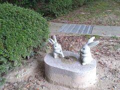 出雲大社境内では社務所の南東に位置する「ご慈愛の御神像」と呼ばれている「因幡の素兎」がモチーフとなった大国主大神さまとウサギの青銅の御像の他に現在46羽のウサギたちがいます。(出雲大社参照)記念写真撮影スポットとしていかかでしょうか。