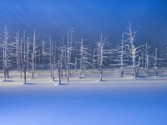 美しすぎる白銀の世界! 冬だから行きたい北海道の絶景スポット