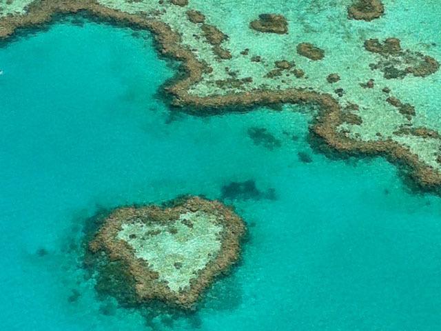 キラキラの海、可愛い動物、豊かな自然に癒やされる♪ オーストラリアで出会える天国の島