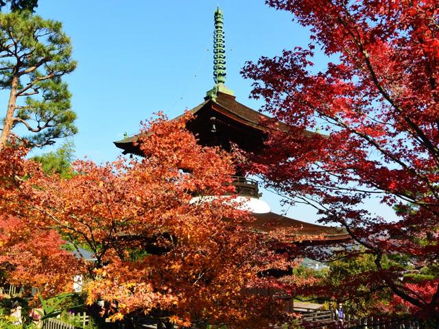 トラベラーが選ぶ!京都の紅葉スポット10選。おすすめグルメ付き!