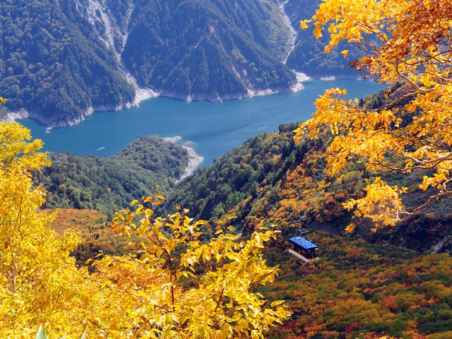 必見!立山の秋をお得に楽しむなら「立山黒部アルペンきっぷ」で決まり!