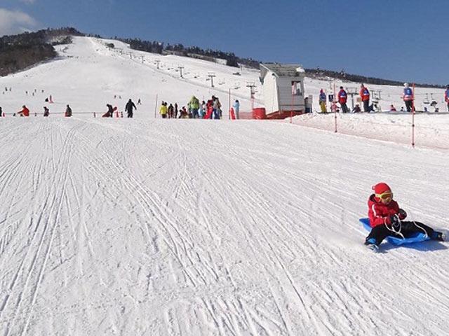 春スキー・スノーボード特集